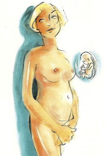 Schwangerschaft Dritter Monat von der 9. bis zur 12. Woche