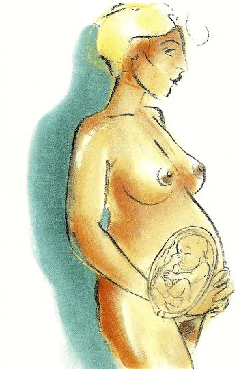 Schwangerschaft neunter Monat von der 33 bis zur 36 Woche