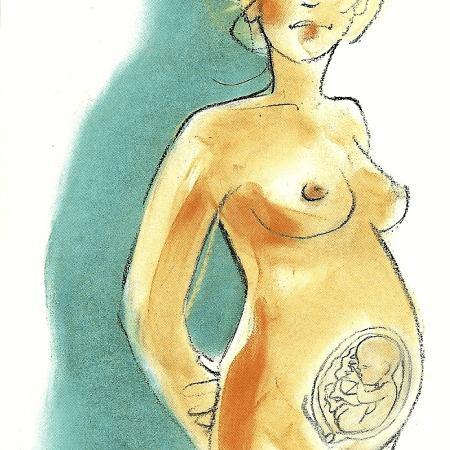 Schwangerschaft Sechster Monat von der 21 bis zur 24 Woche